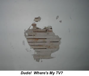 The Grinch Stole My TV